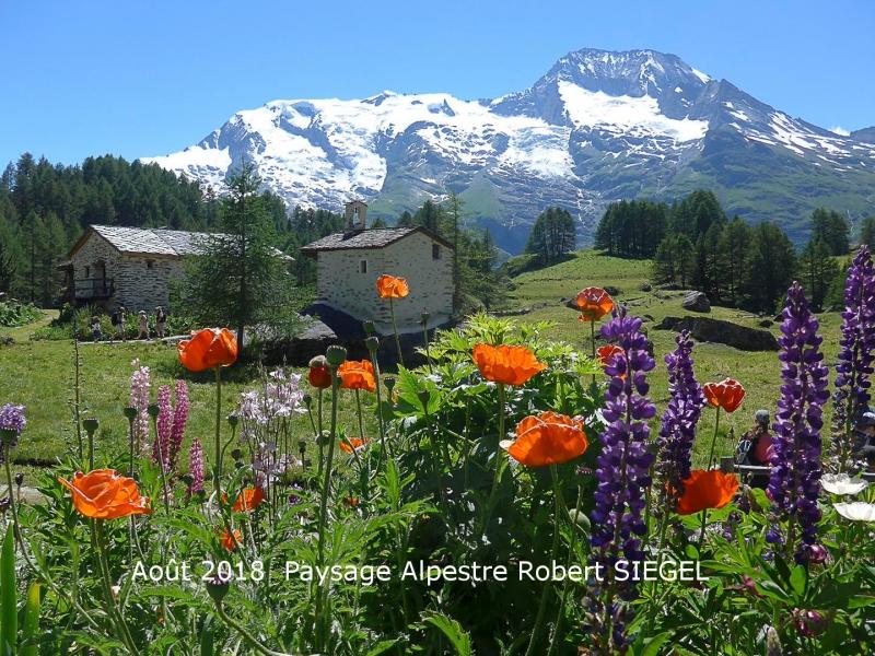 08_2018_Paysage Alpestre_RobertSiegel