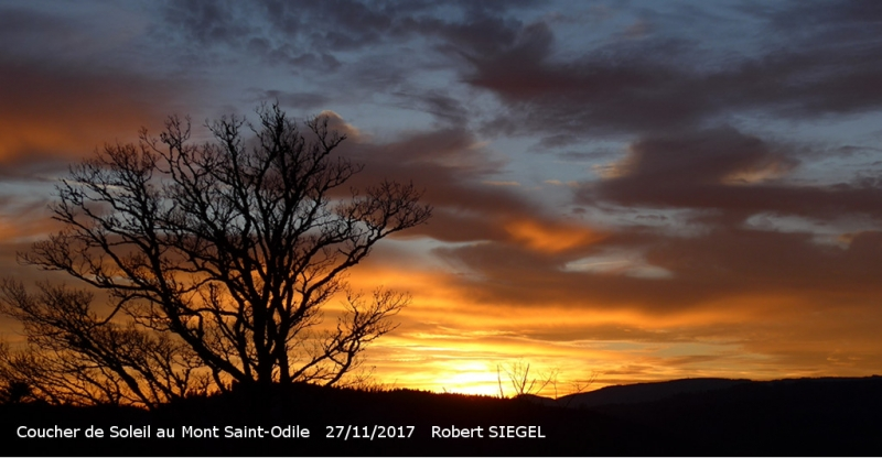 robert_siegel_17_11_saint_odile