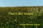 fleursvosges000_1363187954
