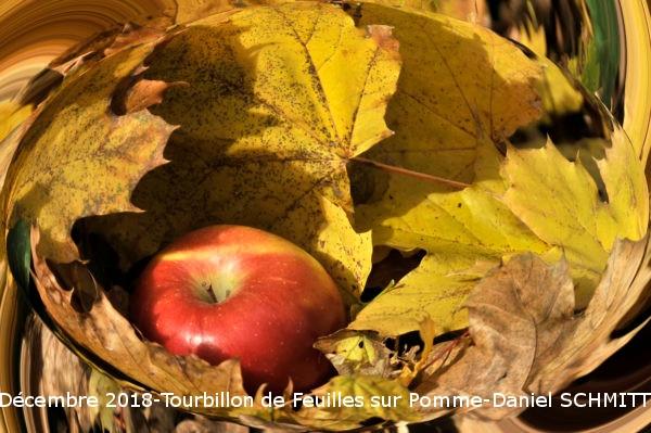 12_2018-FeuillesAutourDunePomme Daniel SCHMITT